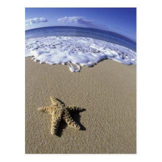 Postal Los E.E.U.U., Hawaii, Maui, playa de Makena,