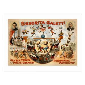 Postal Los monos de ejecución más grandes 1892 del mundo