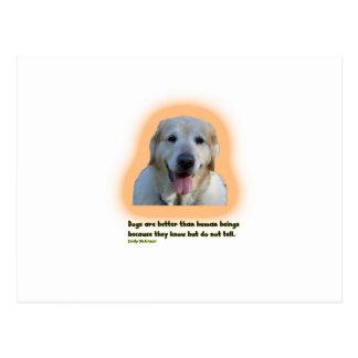 Postal Los perros son mejores que seres humanos