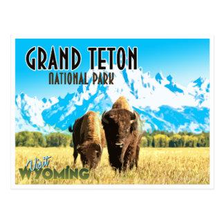 Postal magnífica del viaje del vintage de Wyoming