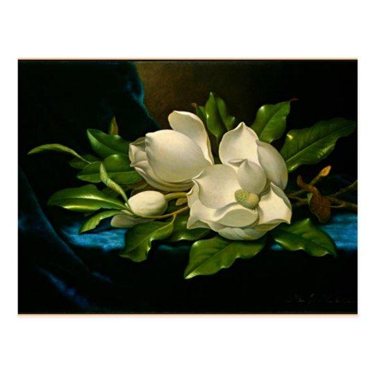 Postal Magnolia gigante en un paño azul del terciopelo