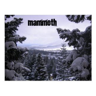 Postal Mammoth Mountain