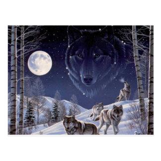 Postal Manada de lobos