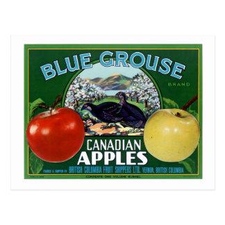 Postal Manzanas azules del canadiense del urogallo