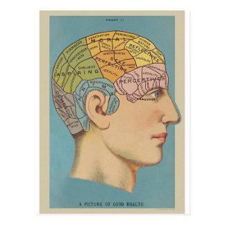 Postal Mapa del cerebro