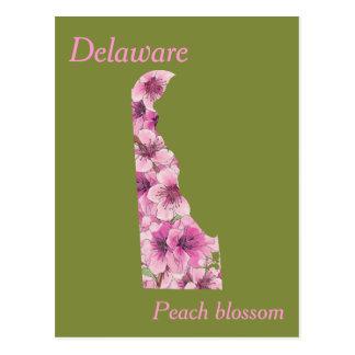 Postal Mapa del collage de la flor de estado de Delaware