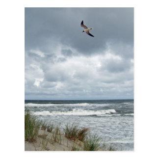 Postal Mar tempestuoso