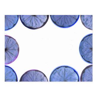 Postal Marco azul de la rebanada del limón que brilla