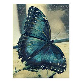 Postal Mariposa azul