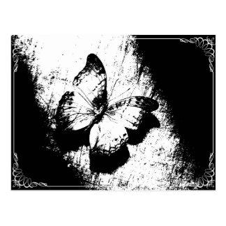 Postal Mariposa blanco y negro