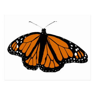 Postal Mariposa de monarca negra y anaranjada