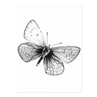 Postal Mariposa del arte pop
