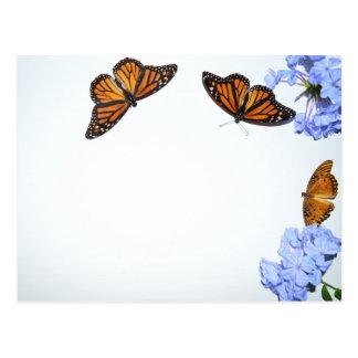 Postal Mariposas de la primavera