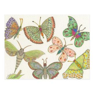 Postal Mariposas de la serie #4 del eje de los