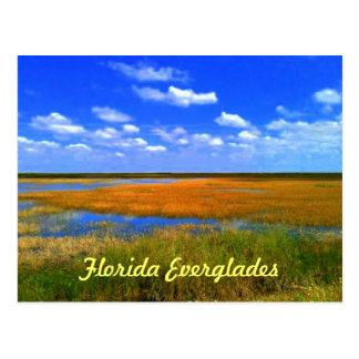 Postal Marismas de la Florida