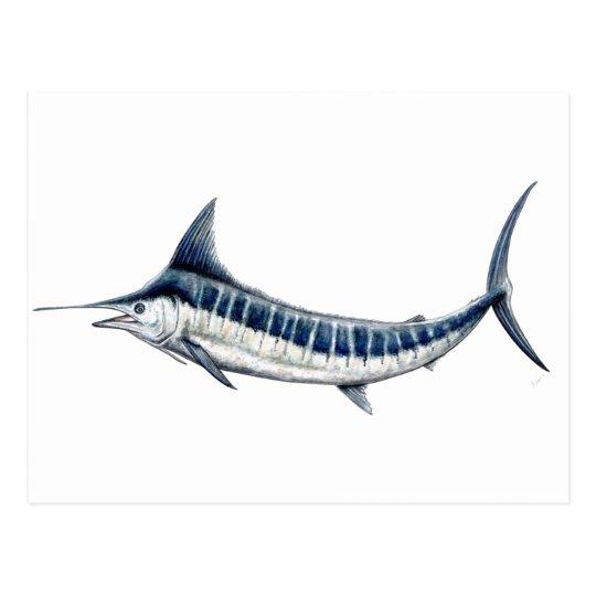 Postal Marlin azul-redbubble