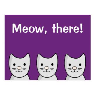 Postal Maullido gris del ` de los gatos del gatito,