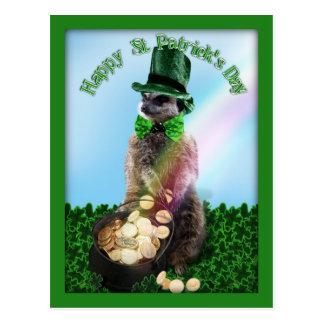 Postal Meerkat afortunado con el día de St Patrick de la