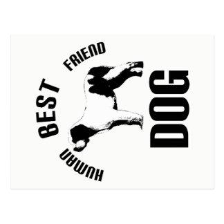 Postal Mejor amigo del ser humano del perro