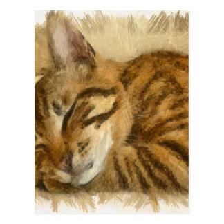 Postal Mentira dejada de los gatos el dormir