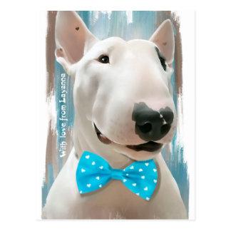 Postal Mi bull terrier