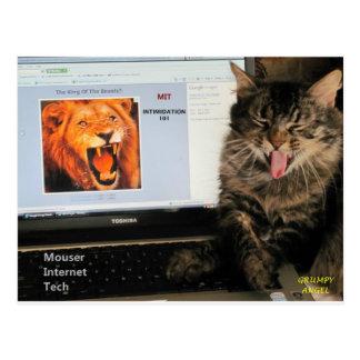 Postal Mi gato estudia en la tecnología del Internet del