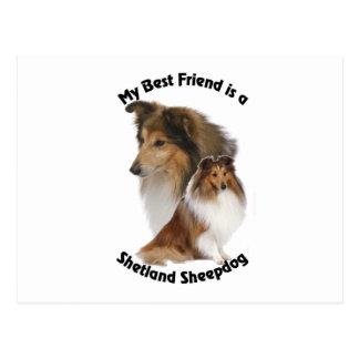 Postal Mi perro pastor de Shetland del mejor amigo