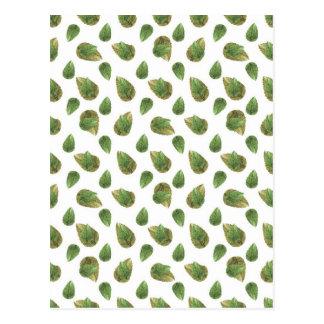 Postal Modelo de la naturaleza del adorno de las hojas