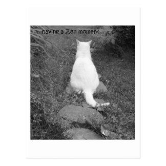 Postal Momento del zen
