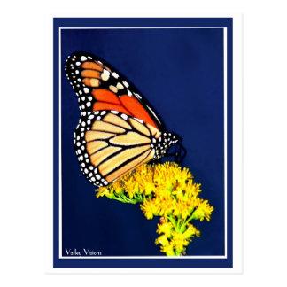 Postal Monarca y distensión amarilla