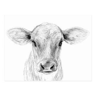 Postal MOO una vaca joven del jersey