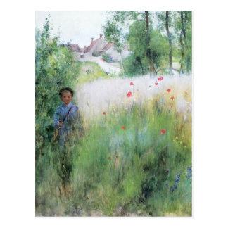 Postal Muchacho en el prado