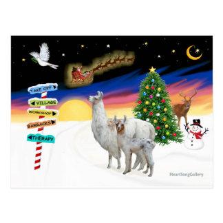 Postal Muestras de Navidad - mamá Llama y bebé