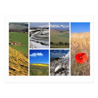 Postal Multi-imagen del sur de los plumones