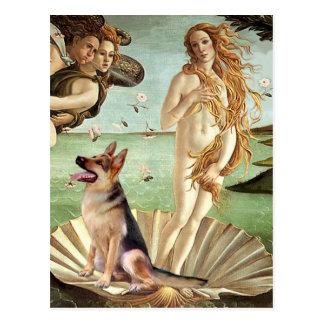 Postal Nacimiento de Venus - pastor alemán 1