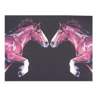 Postal Nariz de los caballos de proyecto a sospechar