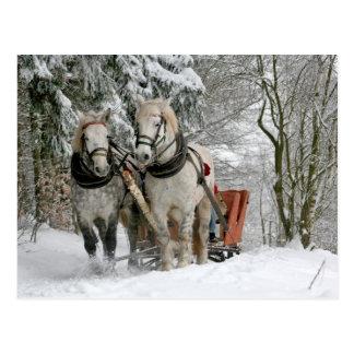 Postal Navidad de los caballos de proyecto