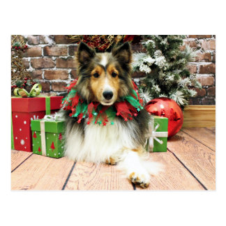 Postal Navidad - Sheltie - duquesa