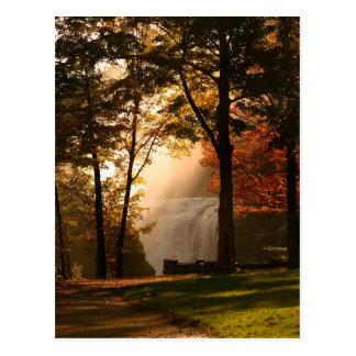 Postal Niebla de la cascada de los otoños