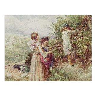 Postal Niños que escogen las zarzamoras, siglo XIX