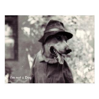 Postal No soy un perro