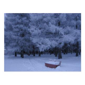 Postal Noche del invierno