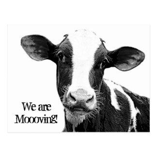 Postal ¡Nos estamos moviendo! Cambio de Moooving de vaca