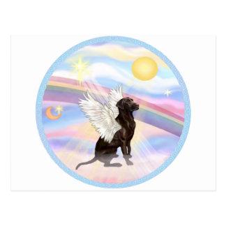 Postal Nubes - ángel del labrador retriever del chocolate