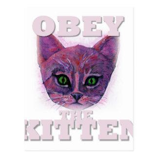 Postal Obedezca el gatito