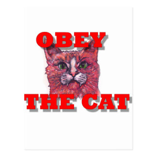 Postal Obedezca el gato
