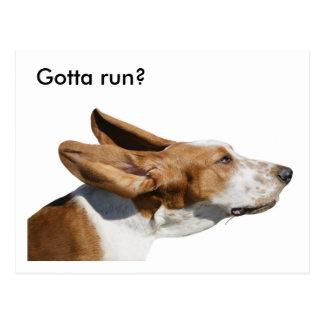Postal Oídos de Basset Hound del canguro del mascota que