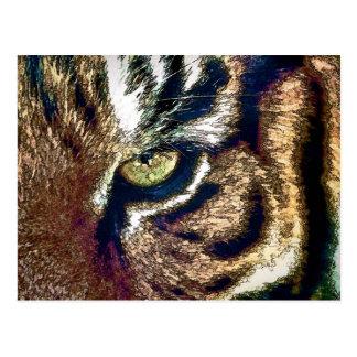 Postal Ojo del tigre