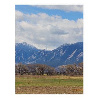 Postal Opinión del perro de las praderas de Boulder