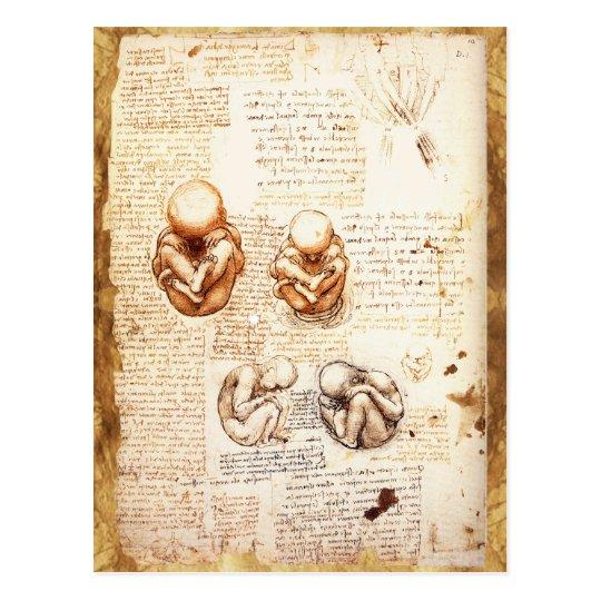 Postal Opiniones un feto en la matriz, Ob-Gyn médico   Zazzle.es